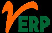 ERP consultant   vERP
