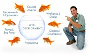 web development company in India