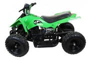 Amazing Deals on Peg Perego Quad Bikes
