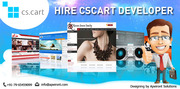 Hire CS Cart Developer & Get 40 % Save From Total Cost