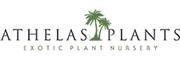 Online Plant Nursery Eastbourne